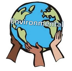 Environmental world