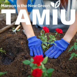 Artwork for Maroon is the New Green campaign