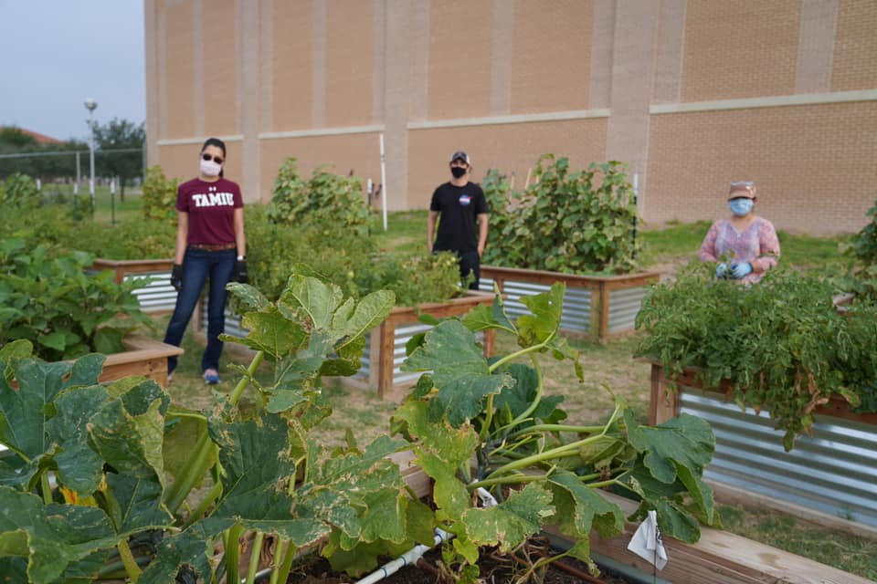 TAMIU Garden with two students helping out.