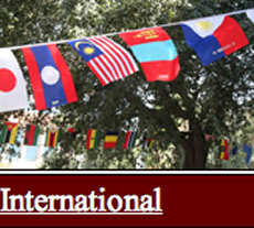 Link to International Orientation Page